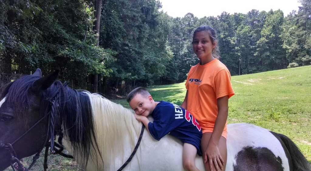 Equine Therapy Horse